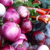 onions0001