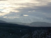 snowsnow0005