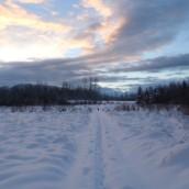 snowsnow0016